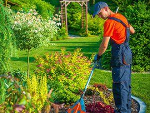 creazione e manutenzione di giardini sia pubblici che privati