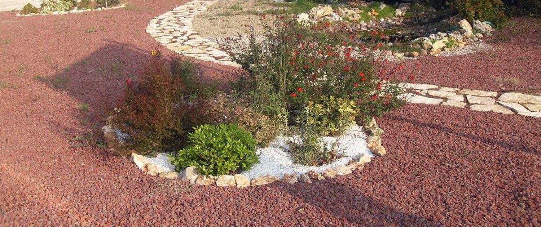Alberi Ornamentali Da Giardino piante da giardino | vivai dalmonte gaspare faenza.